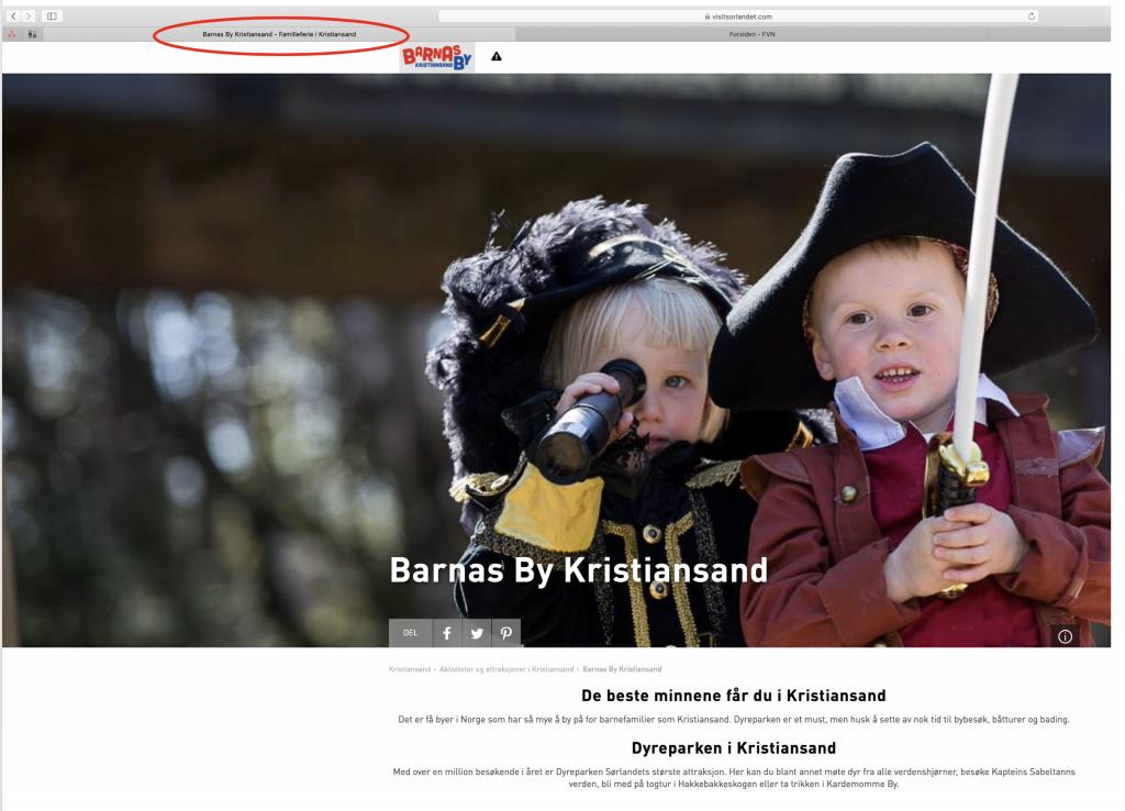 Screenshot metatittel i nettleserfane